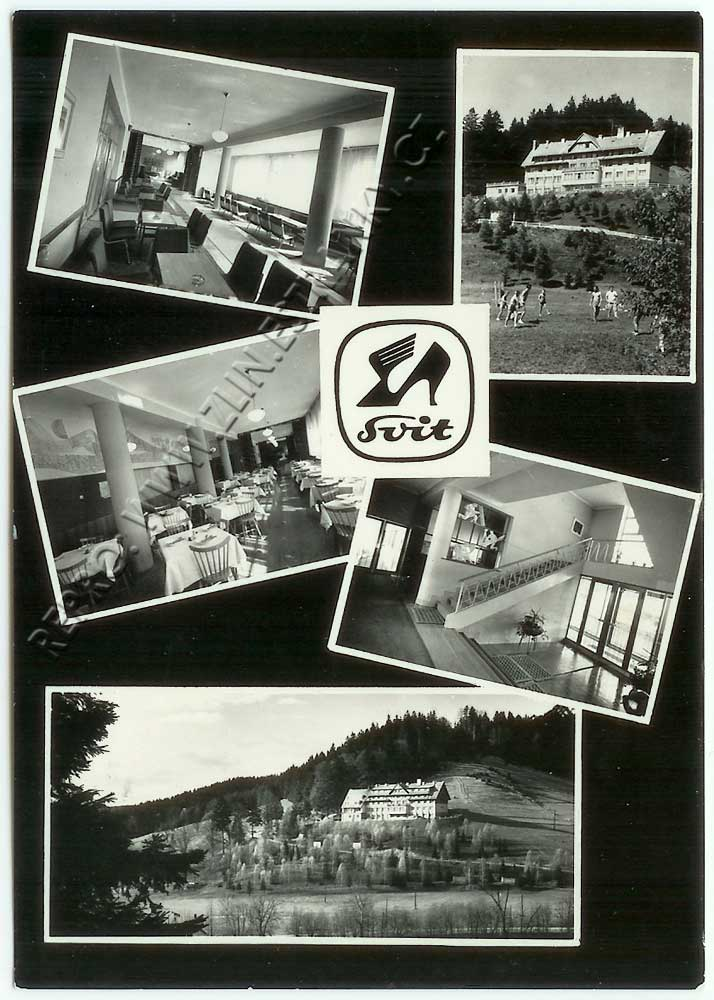 svit---leskove-73-web